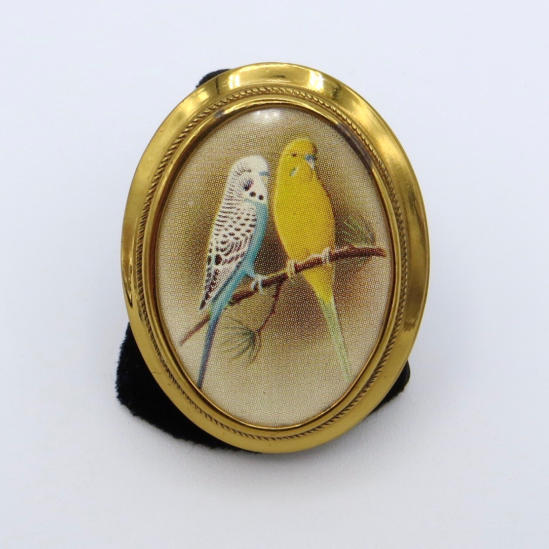 Parakeet Picture Brooch